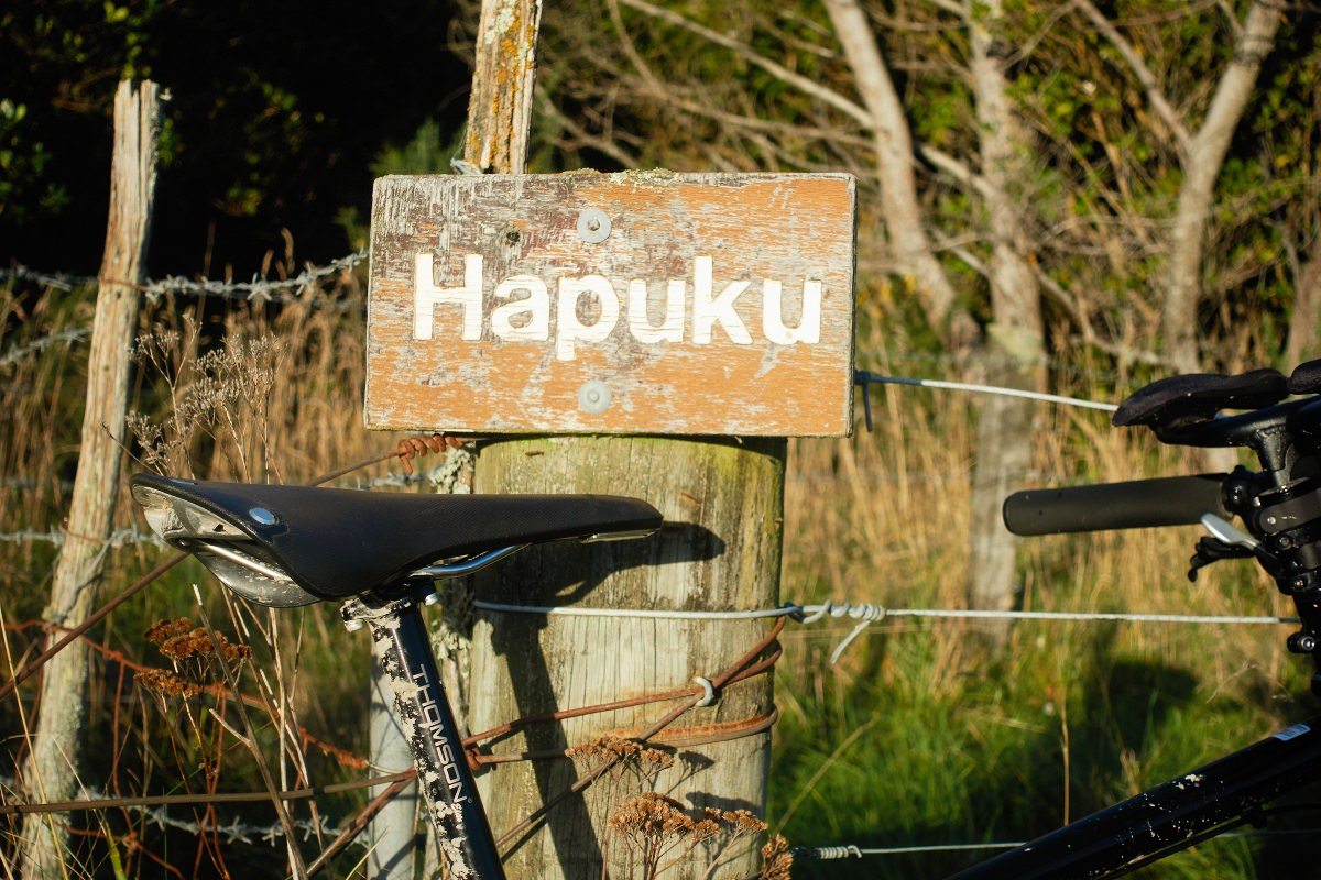 Kaikoura Cycle Trail